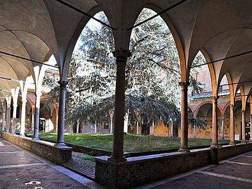 siena universita foto